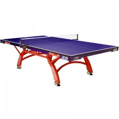 Official ping pong table for competition